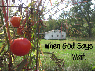 Christian Devotional on Waiting on God